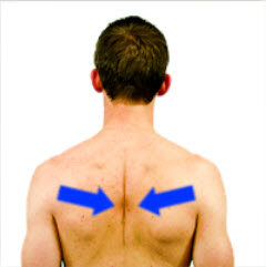 Scapular-Retraction